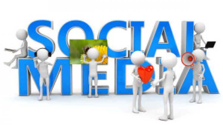 Forming the social media team